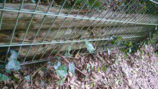 Foto eines Holzstapels hinter Gittern